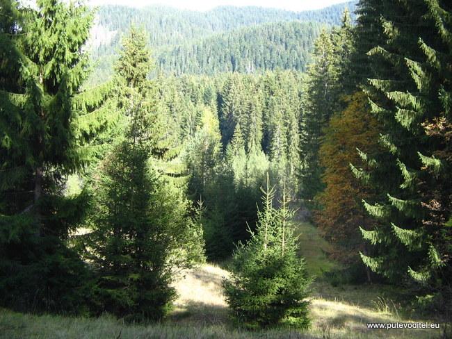 резерват Шабаница