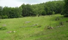 Кръстова гора