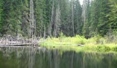 Чайрските езера